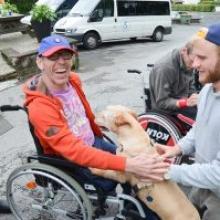 Hunde bringen Behinderte und Nicht-Behinderte näher zueinander und sind eine wahre Freude.