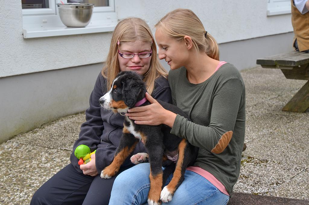 Haustiere fördern die emotionale, geistige und soziale Entwicklung.
